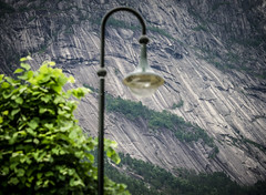 Wherever there is soil, there is life... (Dan Österberg) Tags: eidfjord norway norge hardanger cliff mountain wall steep harch soil growing nature rock stone lamp post slide