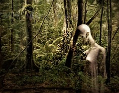 ???!!! (SM Tham) Tags: ghost spirit apparition forest jungle woods haunted haunting supernatural mystery mysterious scary frightening