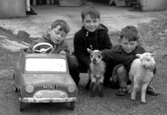 We did have two lambs (theirhistory) Tags: children boy kid coat jacket trousers sandals lamb sheep toy car
