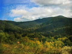 A walk in the mountains. (jeanne.marie.) Tags: landscape textured beaverdamvalley mydailywalk sky clouds goldenrod barn ashevillenc asheville iphone7plus iphoneography autumn mountains