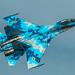 Su-27UB1M