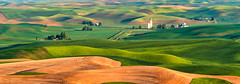 Steptoe-Butte-View2 (fieldsajay) Tags: palouse steptoe butte washington