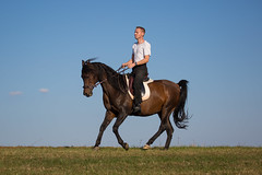 Basim_OS180365 (OliverSeitz) Tags: elbasim wachlarz elda arabian vollblutaraber pferd tier