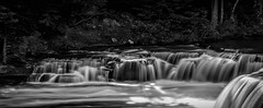 Lower Tahquamenon Falls..... (Kevin Povenz Thanks for all the views and comments) Tags: 2017 september kevinpovenz tahquamenonfalls tahquamenon upperpeninsula upnorth blackandwhite bw canon7dmarkii water waterfall river longexposure shadow movement