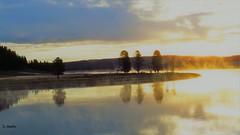 Misty Morning (Suzanham) Tags: mist steam water sunrise river wyoming nature yellowstonenationalpark park yellowstone