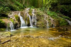 Wild Creek (Uros_N) Tags: slovenia slovenija belakrajina whitecarniola nikon d5300 sigma divjipotok wildcreek nature longexposure semič semic črmošnjice crmosnjice
