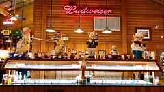 Pigs at the Salad Bar (vtom61) Tags: