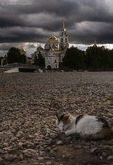 Nilo-Stolbenskaya desert (Lyutik966) Tags: nilostolobenskayadesert russia monastery architecture cat bridge island seliger orthodoxy religion animal dome temple church
