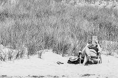 Histoires sur la plage (Nicojuli) Tags: personnes dune plage livre sable foin noiretblanc monochrome