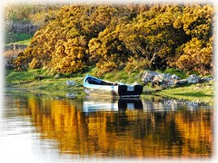 Calm Evening, Carraroe, Co. Galway. (willieguildea) Tags: boat fiashinboat water waterscape tree nikom coolpix p900 carraroe galway ireland eire shore shoreline