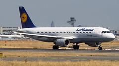 Airbus A320-211 D-AIPM Lufthansa (William Musculus) Tags: frankfurt am main frankfurtmain fraport fra eddf rhein daipm lufthansa airbus a320211 lh dlh a320200 william musculus
