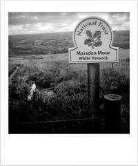 Marsden Moor (Missy Jussy) Tags: marsdenmoor landscape lancashire land outdoor outside walkinglandscape walks nationaltrust moors moorland sign fence countryside rural barbwire grass mono monochrome blackwhite bw blackandwhite whitehassock