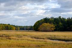 Scarborough Marsh, Maine (jtr27) Tags: dscf2952xl jtr27 fuji fujifilm xt20 xtrans fujinon xf 50mm f2 f20 rwr wr scarborough marsh wetland maine autumn newengland landscape saltmarsh