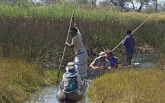 Poling through the Delta (nisudapi) Tags: waterway 2018 africa botswana okavango delta okavangodelta camp campsite water canoe makoro mokoro pole poling