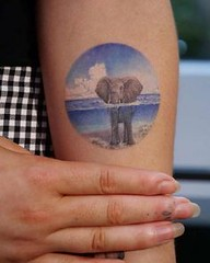 Elephant in the wate (TattooForAWeek) Tags: elephant wate tattooforaweek temporary tattoos wicker furniture paradise outdoor