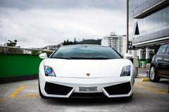 Lamborghini Gallardo LP 560-4 Bicolore (Natty France @nfsphoto) Tags: lamborghini gallardo lp5604 bicolore diamondcardetail detalhamentoautomotivo florianópolis floripa fln santacatarina sc brasil brazil canon6d canon 6d