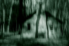 Deep in the woods...Trick-or-Treat (LotusMoon Photography) Tags: monochrome creepy woods cabin photomanipulation dark moods trees halloween night midnight annasheradon lotusmoonphotography spooky filterforge icm