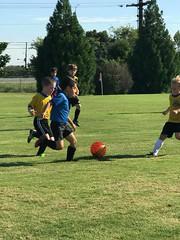 MCSA Clarksville Soccer Fall 2018 Week 3 (17) (MCSA soccer) Tags: clarksville soccer mcsa montgomery heritage