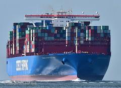 Cosco Shipping Leo (Bernhard Fuchs) Tags: boat cargo cargoships cuxhaven containerschiff containerschiffe elbe frachtschiff frachtschiffe nikon schiffe ship ships vessel water cosco schiff boot wasser containership cargoship