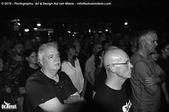 2018 Bosuil-Het publiek bij DVL en Beaux Gris Gris 3-ZW