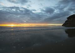 Starting the Day (fantommst) Tags: lisaridings fantommst nz newzealand auckland waiwera wenderholm regional park beach sunrise ocean shoreline shore driftwood landscape cloudy clouds