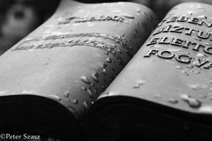 Holy book (Peter Szasz) Tags: debrecen hungary dark black blackwhite moody calm close upclose object autumn fall rain rainy drops water stone sculpture city book religious song words writing pages monument note notes tone sheet psalm christian read monochrome magyarország
