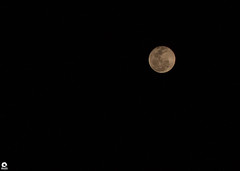 Lua (Michell Fotografia) Tags: lua cheia céu moon riodejaneiro natureza brasil brazil coldheartedorbthatrulesthenight explored full