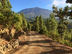 El teide (nailos76) Tags: volcano volcan mountain iphone5s españa montaña islascanarias tenerife