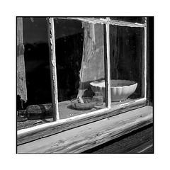 by the window • bodie, ca • 2018 (lem's) Tags: window curtain wood housr cabin cabane fenetre rideau bois bodie ghost town ville fantome ca california rolleiflex t
