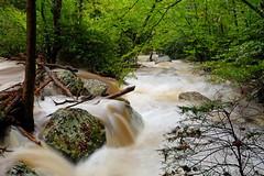 Little Stony Creek: Lots of water (Shahid Durrani) Tags: little stony creek cascades pembroke virginia hurricane michael