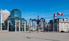 07972-Ottawa (xiquinhosilva) Tags: canada museum nationalgallery ontario ottawa ca