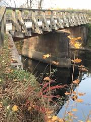 Träbro (Göran Nyholm) Tags: bridge fotosondag fotosöndag bro fs181021