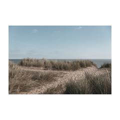 Dunes (Number Johnny 5) Tags: dunes d750 2470mm ordinary tamron nikon beach deserted minimal imanoot empty johnpettigrew mundane