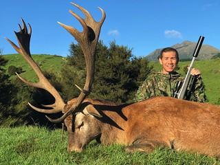 New Zealand Free Range Hunting - Marlborough 47