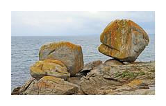 Les rochers (Yvan LEMEUR) Tags: roches rochers côterocheuse finistère bretagne extérieur moëlansurmer quimper armorique rivage océan mer sea landscape paysage cornouaille lichen france tregunc