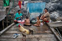 laundry day (Collin Key) Tags: familylife women sulawesi malenge indonesia togianislands pulaupapan bajo children bajau tojounauna sulawesitengah indonesien id