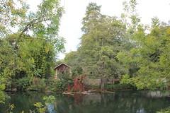 IMG_6204 (nic0v0dka) Tags: maraispoitevin deuxsèvres nouvelleaquitaine river riverside rivière green vert water eau fleuve poitoucharentes