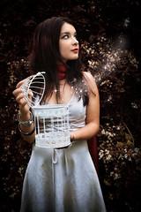 Doll1Sparkles (madcap90) Tags: portrait girl cage sparkles magic