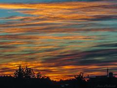 Burlington MA Sunrise_8729 (smack53) Tags: smack53 sunrise morning morningsky paintedsky sky clouds autumn autumnseason fall fallseason burlington massachusetts canon powershot sx530hs canonpowershotsx530hs