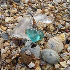 57302391 (aniaerm) Tags: sea coastalfinds sand