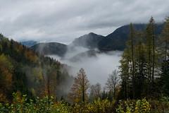 181028_Tyrnau_007 (Rainer Spath) Tags: österreich austria autriche steiermark styria oststeiermark tyrnau nebel wolken fog mist clouds