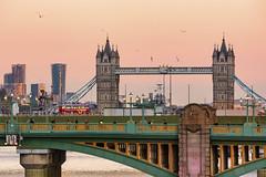 Tower Of Birds (JH Images.co.uk) Tags: london towerbridge bridge people walking bridges bus birds sunset pink pinksky hdr dri movement architecture