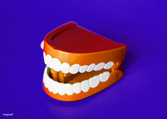 Wind up chattering teeth toy (Rawpixel Ltd) Tags: moth artificial background bite blue bright care chattering chatteringteeth childish children clean clinic closeup colorful crown dental dentist dentistry denture fake gum health hygiene isolated jaw laughing medical medicine model mouth name object oral orange plastic prosthesis purple red retro smile teeth tooth toy treatment wallpaper white windup winduptoy