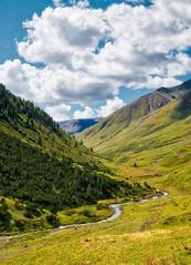 nice valley (lotti roberto) Tags: livigno xpro2 valley vallata cloud green river trees