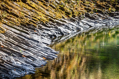 Molalla River in autumn (BLMOregon) Tags: blm bureauoflandmanagement molalla river landscape recreation hiking corridor autumn fall trees color columnar basalt rosette