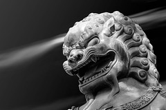 You may not pass ... (Cyclase) Tags: statue lion löwe china asia asien chinesisch sculptur monochrome bw blackandwhite bejing peking city culture historisch historic landmark