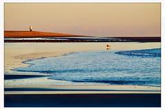 Plum Island Sunrise no. 2 (rlonpine) Tags: rlonpine hss sliderssunday massachusetts newengland coastalphotography sunrise plumisland hipstamatic