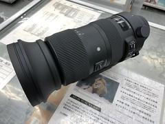 IMG_8004 (digitalbear) Tags: canon eos 6d markii eosr fujiyacamera tokyo japan sigma 60600mm f4563 dg sport