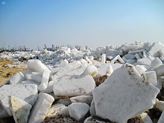 02306703 (aniaerm) Tags: snow ice frost