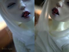 64n2 (Amberkyou) Tags: bjd abjd ball jointed doll asian notdoll lab notdolllab bleu citron tongue dead creepy halloween cute white hair purple blue